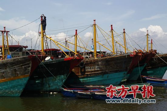 专家称我国应鼓舞渔民前往争议海域捕鱼